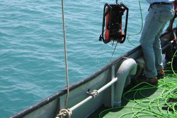 divers-0338C862C0B-AF1B-4C73-E6D2-6AE4133AB42C.jpg